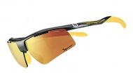 Champion GOLD TI 太陽眼鏡 金色多層鍍膜 B304B2-12